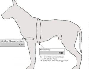 PFAFF-Gehhilfe-Tragehilfe-fuer-Hunde-vorne.1740_3