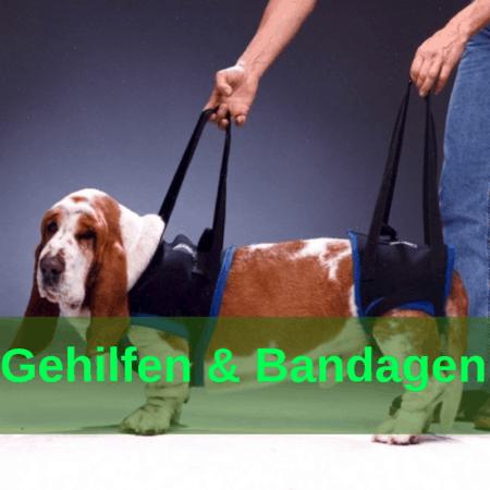 Sanitätsartikel - Gehilfen - Bandagen - Expander
