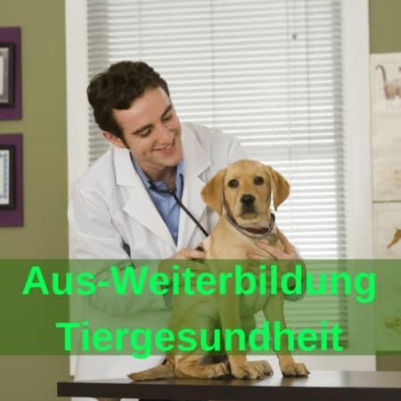 Seminare Gesundheit und Tiergesundheit