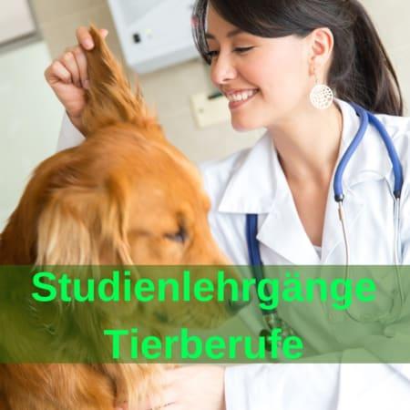 Studienlehrgänge - Tierberufe - Tierheilpraktiker