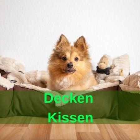 Decken & Kissen