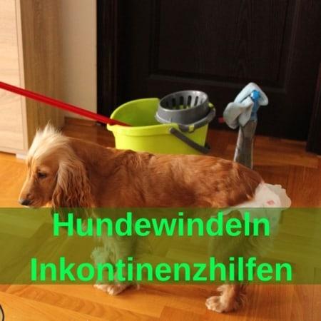 Inkontinenzhilfen - Hundewindeln