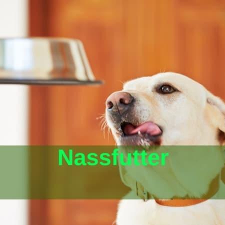Nassfutter Hunde