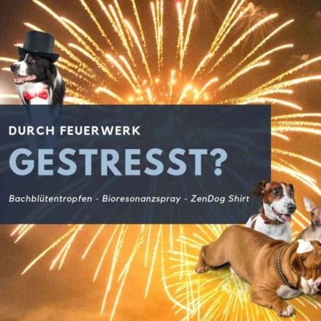 Feuerwerk - Stress