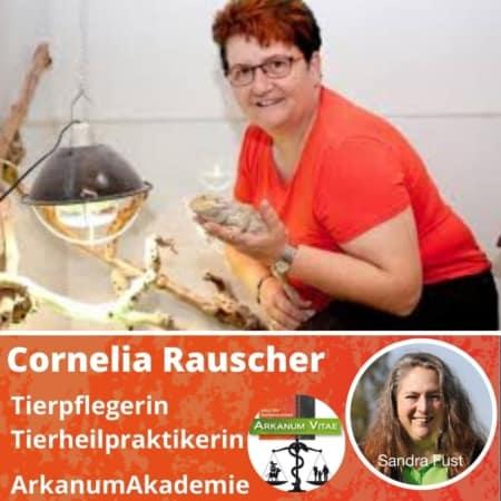 Cornelia Rauscher