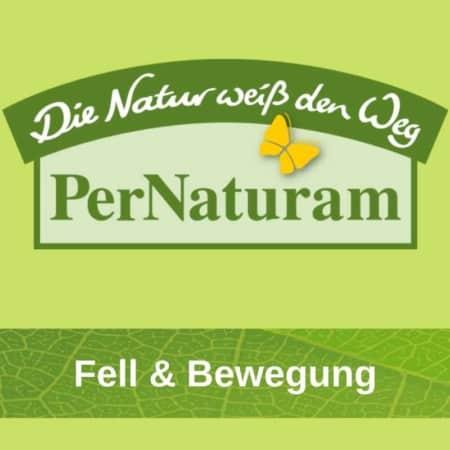 Fell & Bewegung Hund Pernaturam