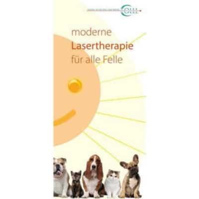 Lasertherapie-kleintier